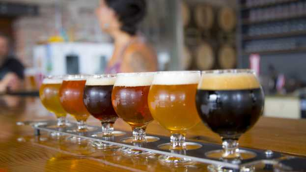 Craft Beer Equipment Market To Register a Strong Growth At a CAGR Of +14.1% and Reach USD 107.85 Billion By 2024 | Analysis by Top Key Players – Alfa Laval, GEA Group, Krones Group, Paul Mueller, Praj Industries, Meura SA