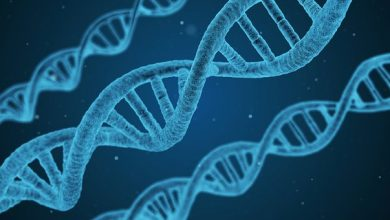 Recombinant DNA Technology Market