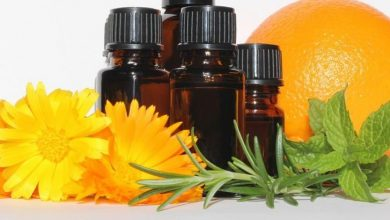 Immortelle Extract Oil Market